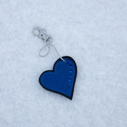 Sininen sydänkoru